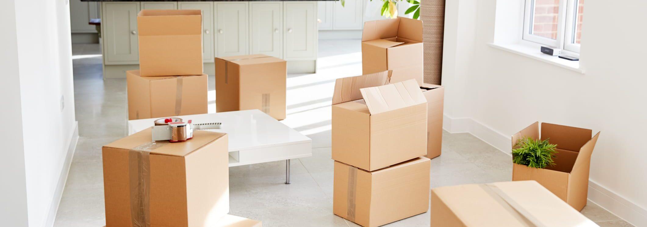 house-move-1